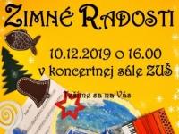 ZimnRadosti19